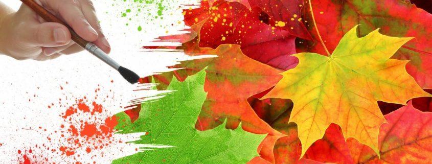 1600x900_painting-autumn-colors